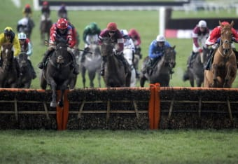 At fishers cross world hurdle betting horse betting systems ukc