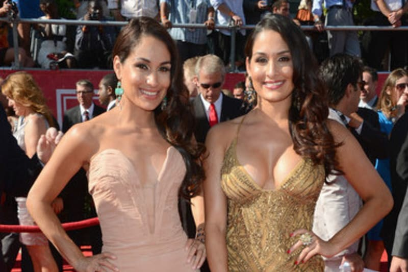 WWE Star Brie Bella's Recent Body Transformation In Pictures 1