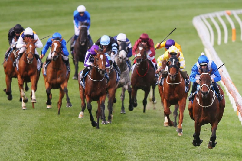 horse racing betting strategy 2021 dodge