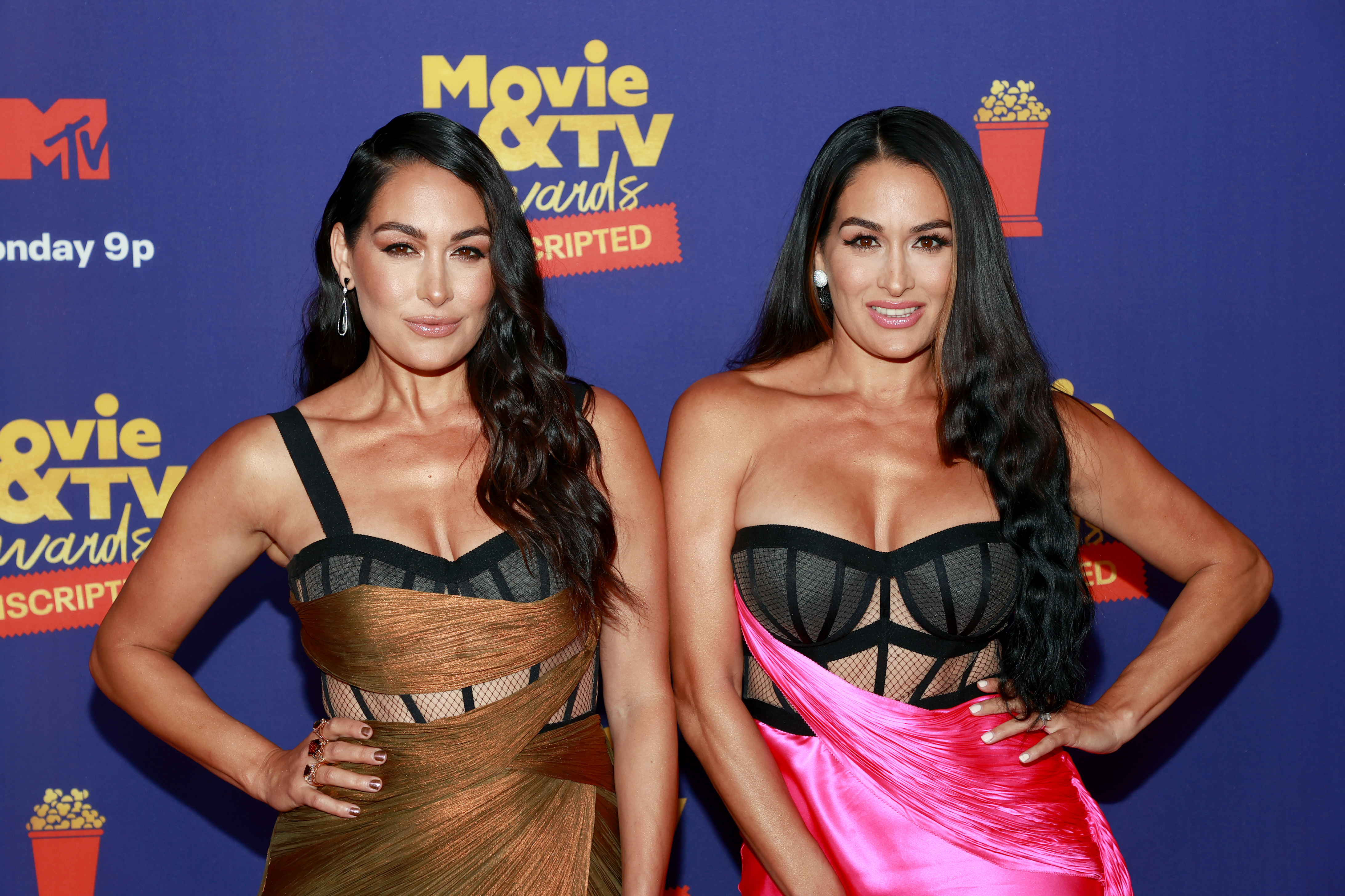 <p>WWE's Brie Bella Says the Bellas'Are Definitely Going to Make a Comeback' thumbnail
